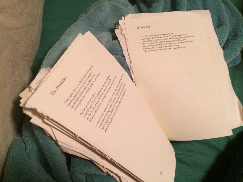 pile of poems